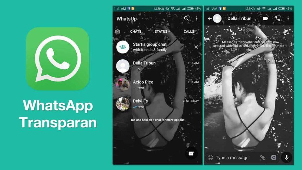 download whatsapp transparan